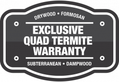 Get the best termite control warranty when you choose Big Time!